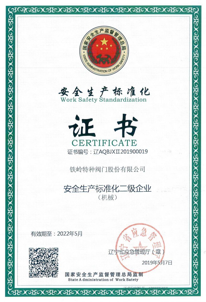 省级安全生产标准化二级企业.jpg